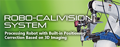 Robo-Calivision System